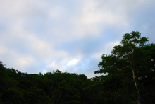 20070818_054009